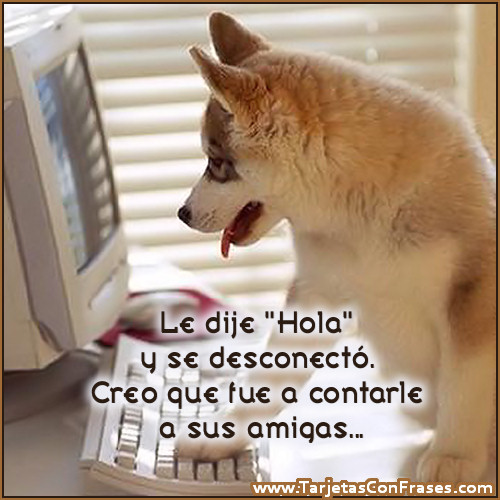 Pin Hola-amiga-frases on Pinterest
